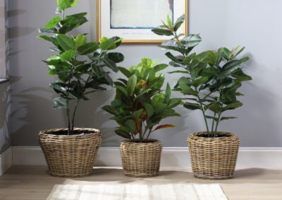 Plant-pot-set-of-3