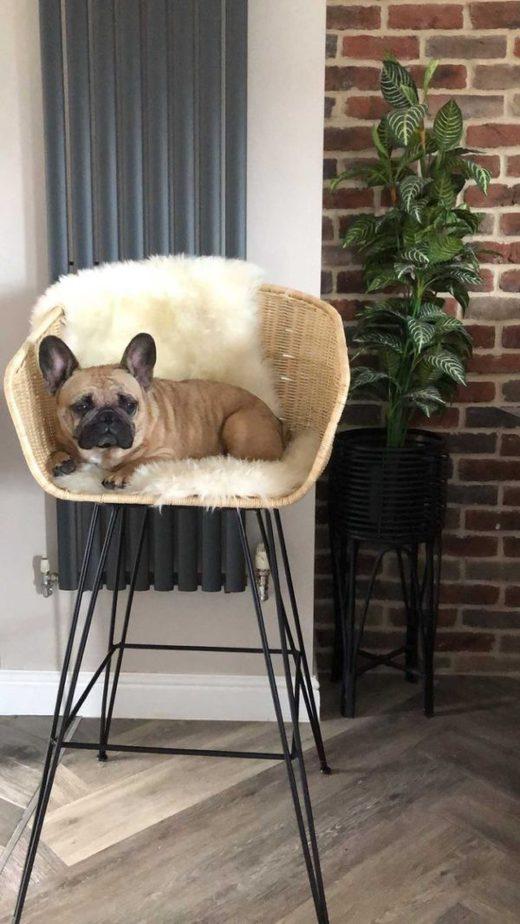 ugc porto bar stool